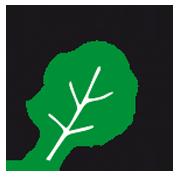 logo ZAZ